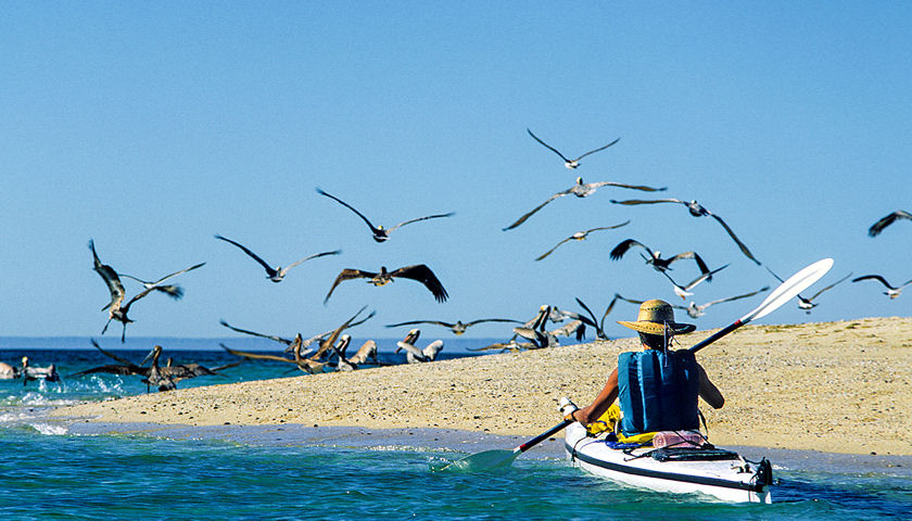 Baja kayaking