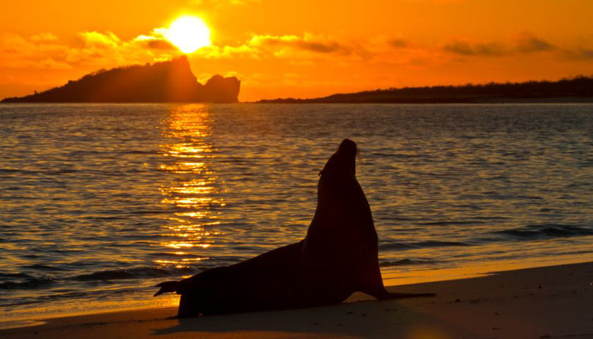 Lindblad Galapagos sunset