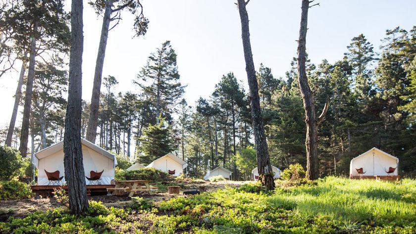 Mendocino Grove tents
