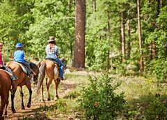 Mormon Lake Lodge Offers Giddyap Mountain Getaway in Coconino National Forest