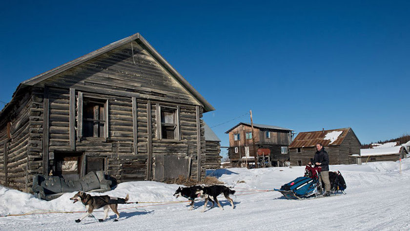 cabin sled dogs