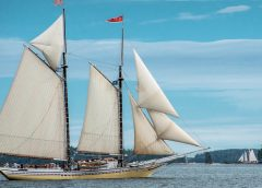 6 Super Bonuses to a Fall Foliage Cruise with Maine Windjammer Association