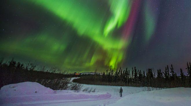 AlaskaNorthernLights Ecotour: Photo lessons, dog sledding, reindeer & hot springs